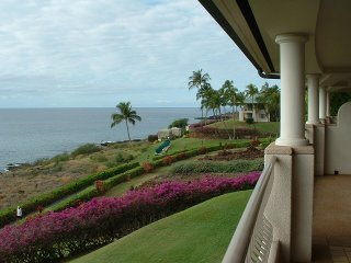 Four Seasons Lanai Landscape