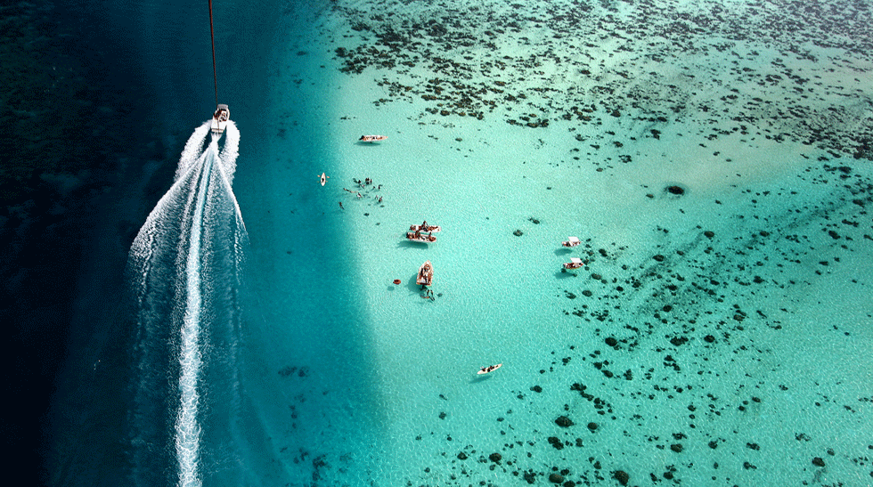 Suntanning and swimming with sting rays in Bora Bora
