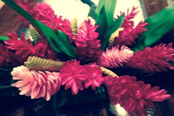 tahiti-flowers-fauna