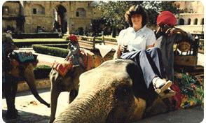 india-elephant-ride