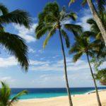 Hawaii Tourism HTJ
