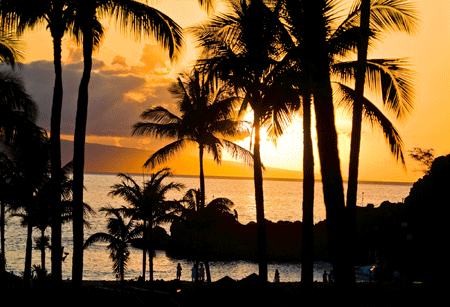 bronze-sunset-hawaii-450
